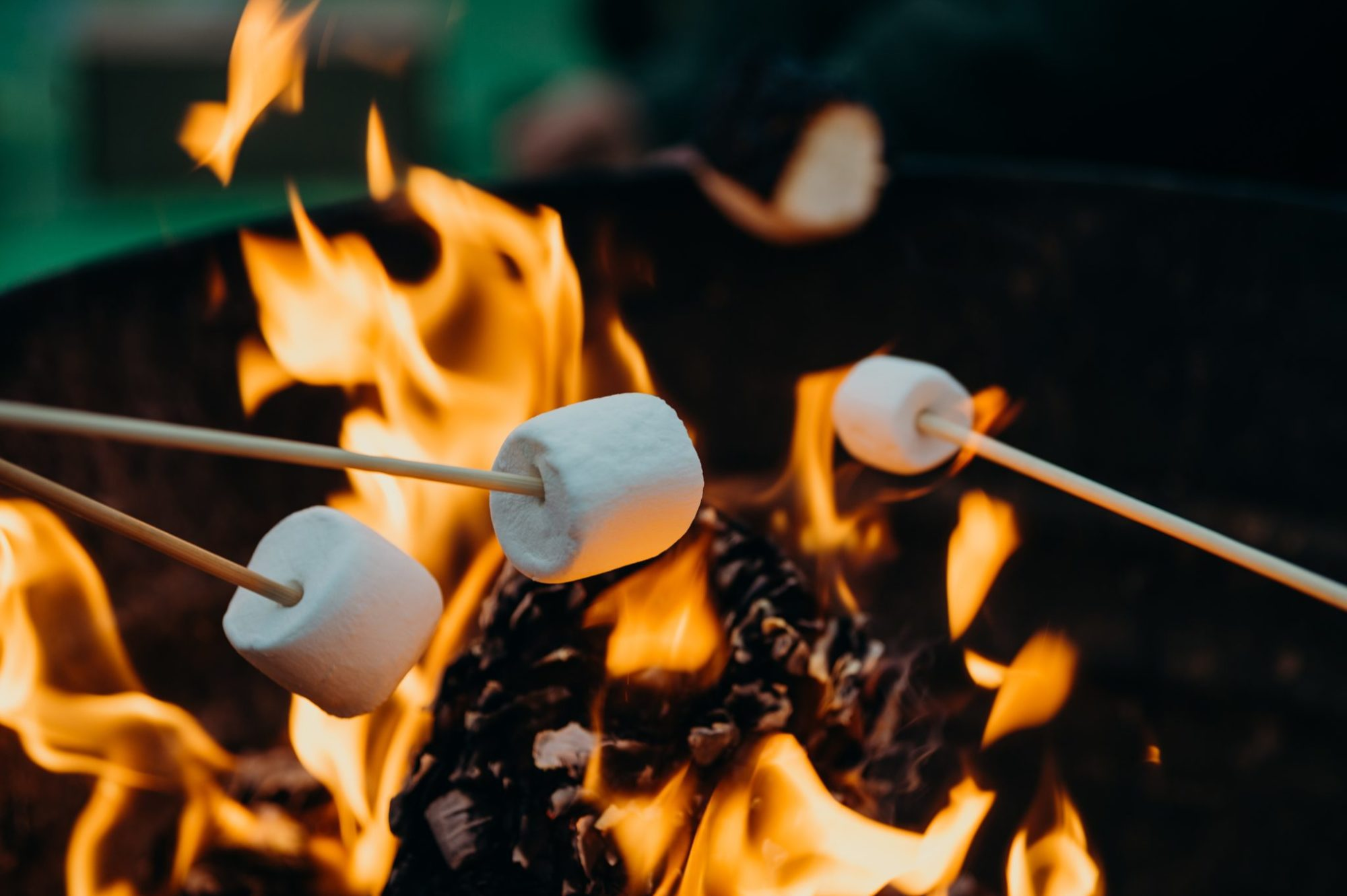 toasting marshmallows over fire